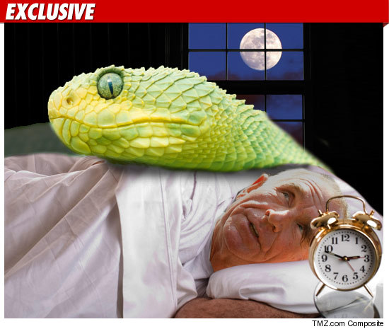 0915_prince_von_snake_bed_TMZ_getty