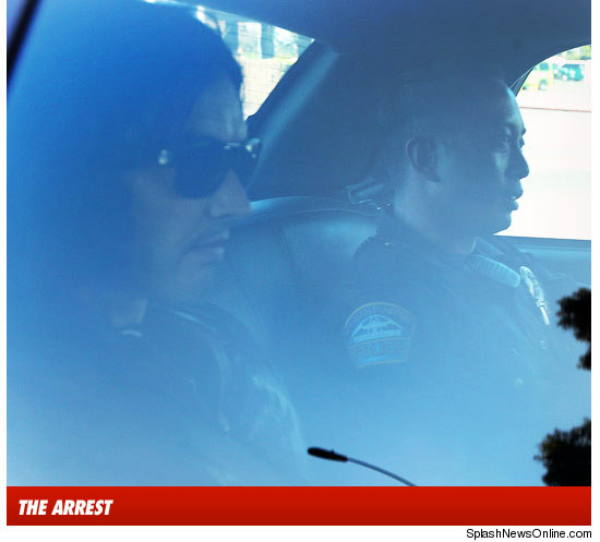 http://ll-media.tmz.com/2010/09/17/0917-brand-cop-car-daz-1081-splash-exc-arrest-1-credit.jpg