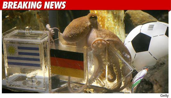 1026_paul_octopus_BN_Getty