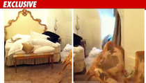 Charlie Sheen -- Hotel Room Photos