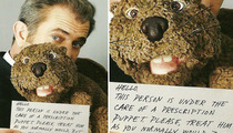 Mel Gibson Leaves It to 'Beaver'