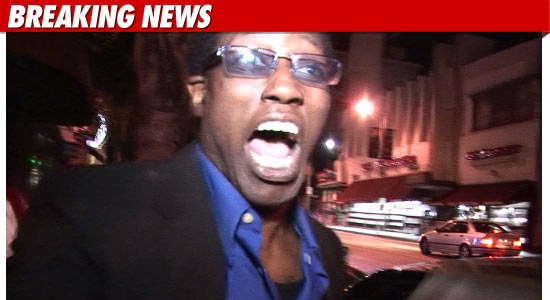 Wesley Snipes Jail