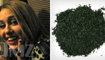 Miley's Herb Salvia -- Classified As 'Drug of Concern'