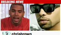 Chris Brown -- Racial, Gay Slurs in Twitter Feud