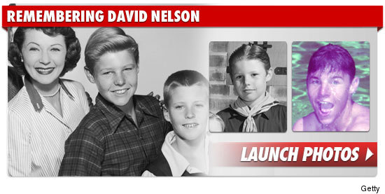 0112_remembering_david_nelson_footer