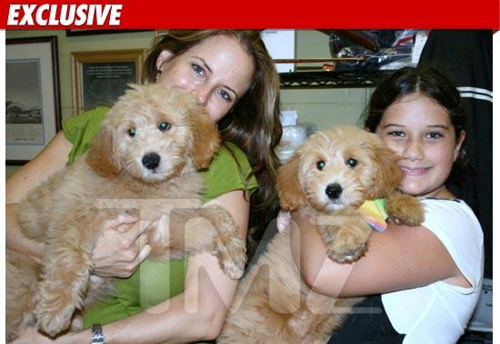 Travolta Dogs