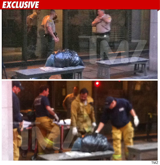 http://ll-media.tmz.com/2011/01/25/0125-court-homeless-ex2-credit.jpg
