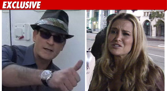 Charlie Sheen and Brooke Mueller Divorce