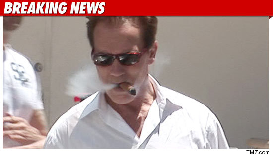 Arnold Schwarzenegger Back to Acting Again