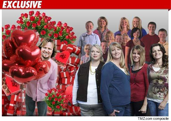 0213_sister_wives_tmz_composite_ex