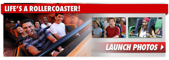 0314_rollercoaster_footer