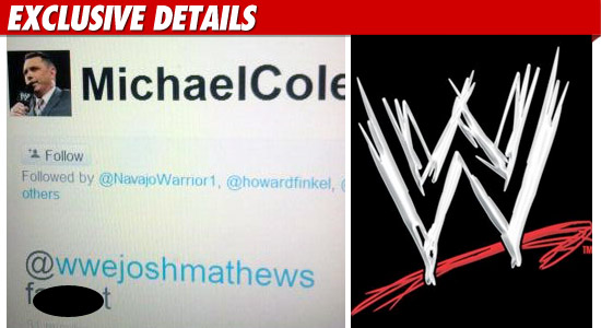 0326_WWE_MIchael_Cole_EXD