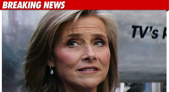 Meredith Vieira Leaving Today Show