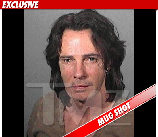 Rick Springfield Mug Shot