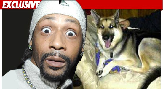 0701_katt_williams_dog_ex_tmz