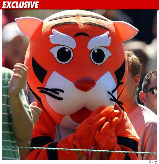 0707_tiger_EX_Getty_01