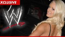 WWE Increases Security for Everyone After Threat Against Diva