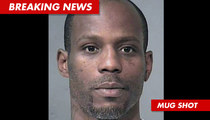 DMX Arrested Again ... Allegedly Topped 100 MPH
