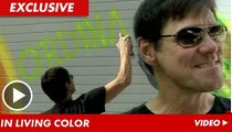 Jim Carrey -- I'm Fighting 'The Man' ... with a Spray Can!!