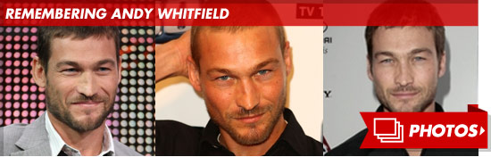 0912_andy_whitfield_footer