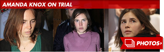 1003_amanda_knox_footer_v2