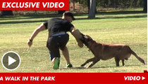 'Blue Mountain State' Star -- I'm Training ATTACK DOGS!!!