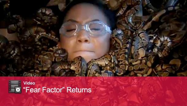 1021_factor_video