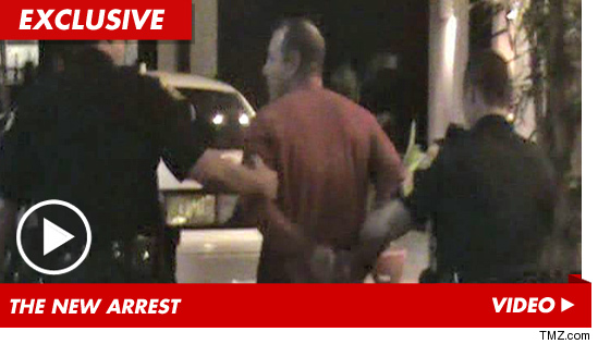 Michael Lohan arrested again