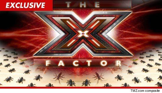 1111_xfactor_bedbugs_EX