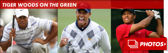 1205_tiger_woods_footer