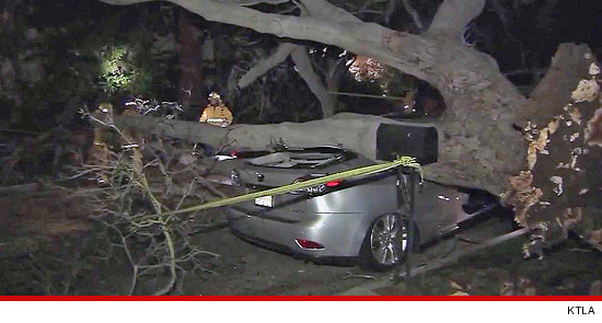 Madeleine Stowe Car Crash