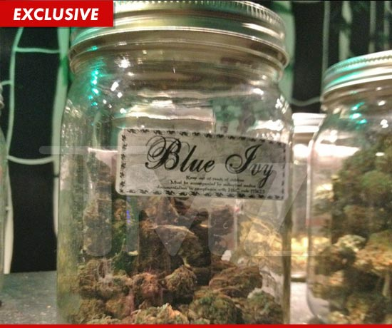 Blue Ivy Weed at a marijuana shop
