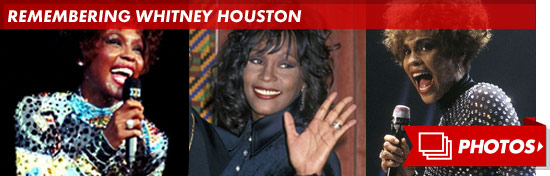 0213_remembering_whitney_houston_footer