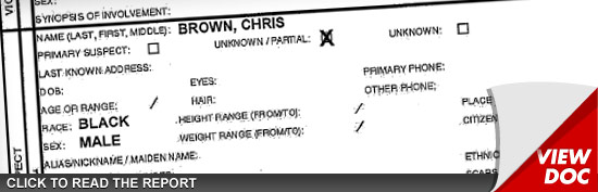 Chris Brown Miami Police Report