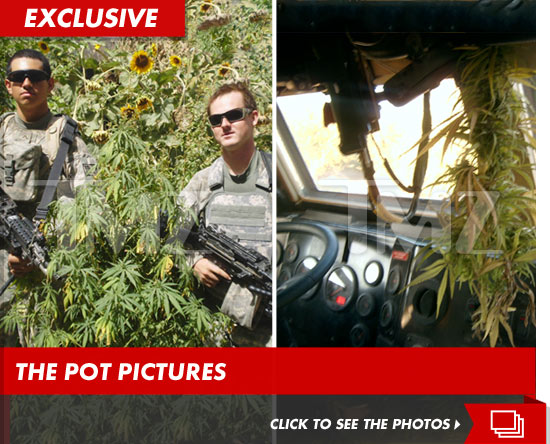 US Soldiers in marijuana fields