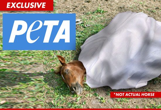 0313_peta_horse_ex_tmz