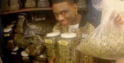 Soulja Boy -- I've Hit The Marijuana MOTHER LODE!!!!