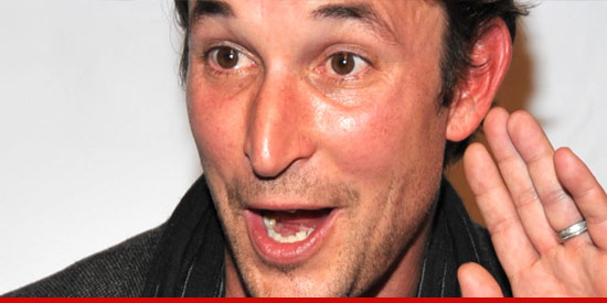 Noah Wyle arrested