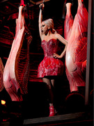 Lady Gaga's Wears Another Meat Dress