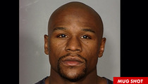 Floyd Mayweather Jr. -- The Mug Shot