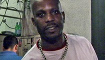 DMX Botched Comeback Tour -- $630,000 Lawsuit DISMISSED