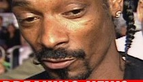 Snoop Faces Felony Weed and Gun Charges