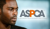 Michael Vick RIPPED By Animal Org. ASPCA -- You STILL Don't Care About Dogs