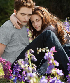 "Kristen Stewart & Robert Pattinson: Lovey-Dovey In New ""Twilight"" Pics"
