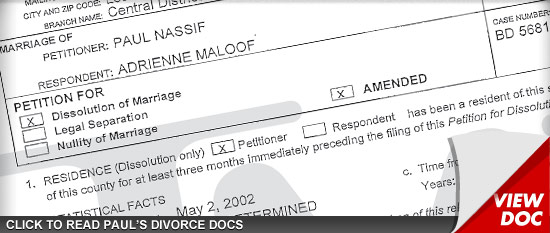 0828_paul_divorce_doc_sub_Asset