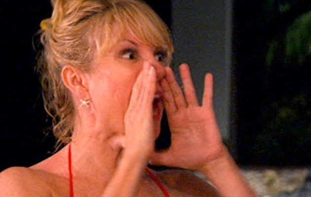 """Housewives"" Unleashed: Aviva Calls Ramona and Sonja ""White Trash"""