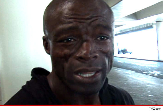 0905_seal_article_tmz