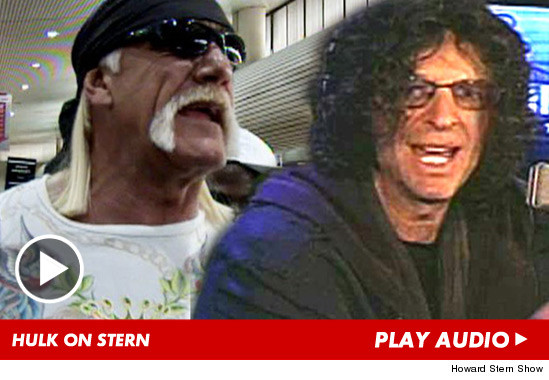 Hulk Hogan just appeared on the Howard Stern show ... and admitted the woman ...