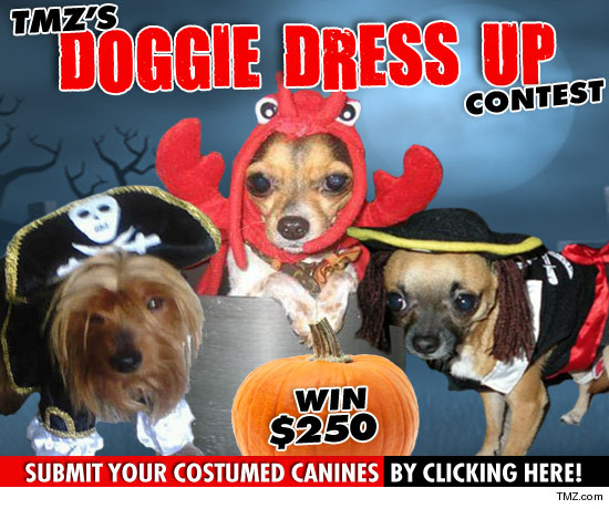 1010_doggie_dress_up_contest 2