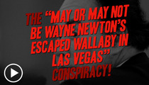 Wayne Newton -- Might Wallaby Keeping an Eye on His Exotic Pets